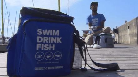 swim-drink-fish