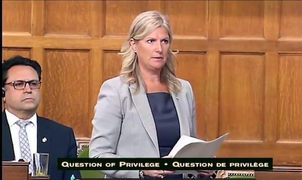 نماینده مستعفی حزب لیبرال گفت کانادا در خطر است
